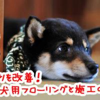 ペットの転倒事故を防ぐために!室内犬のためのすべり止め対策フローリング7選と防滑施工3選